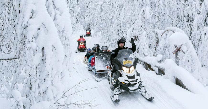 Snow-bobs