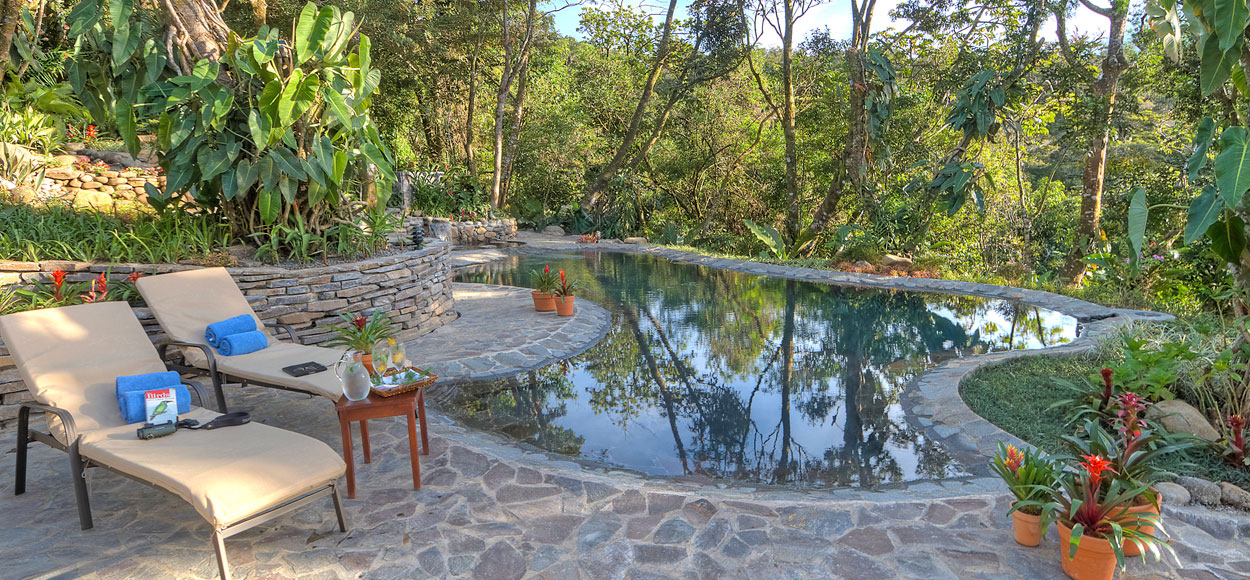 Monteverde Lodge U0026 Gardens Nice Ideas