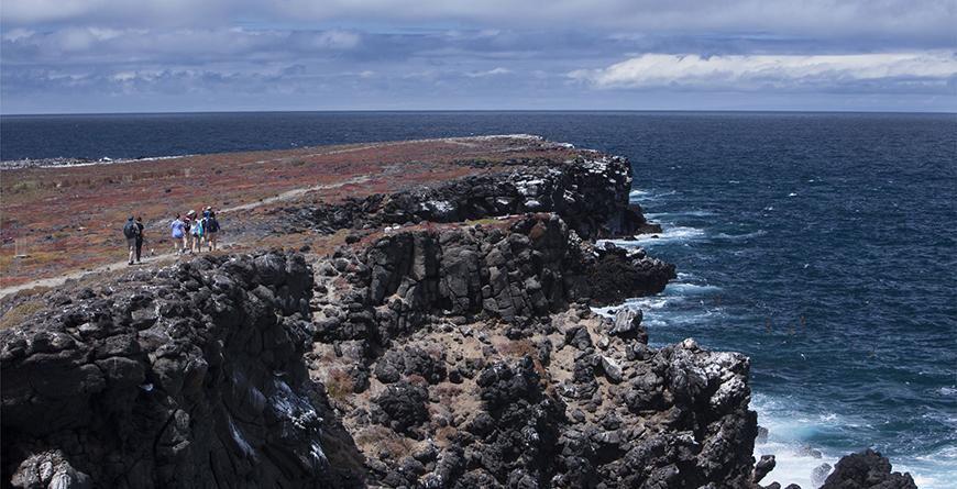 Santa Cruz landscape