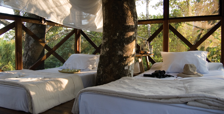 Canopy Tree House Beds