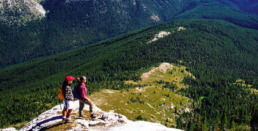Mount Bowman Hike