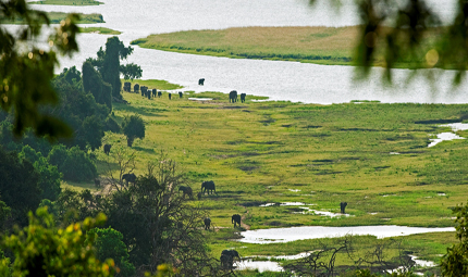 Botswana Sanctuary Chobe Chilwero