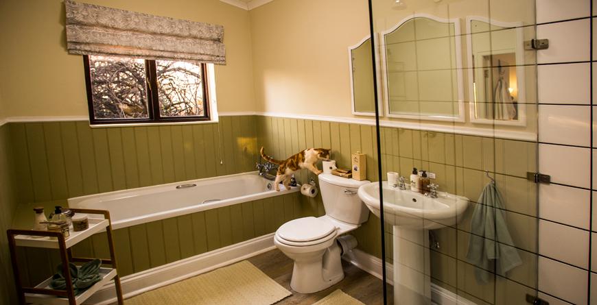 Kiplings Family Cottage Master Bathroom