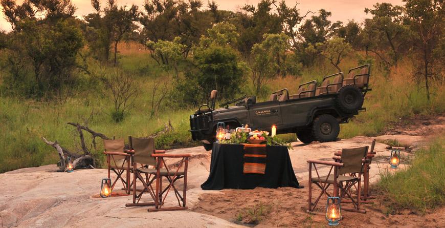 Bush Dining