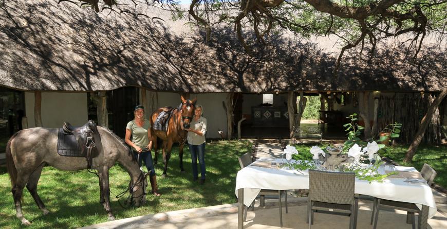 Horses at the Lodge