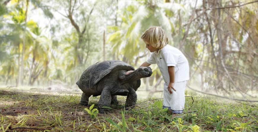 Child with tortoise