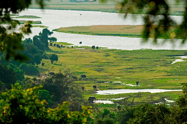 Chobe Chilwero Aerial View