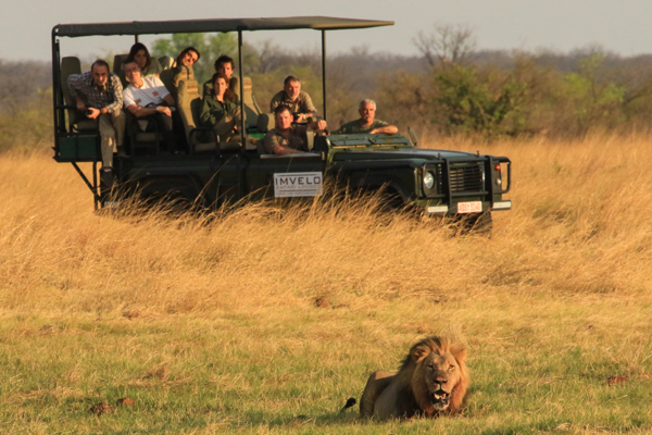 Imvelo Safari Lodges Nehimba game drive