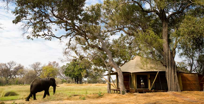 &Beyond Botswana Xaranna Ellie and Tent