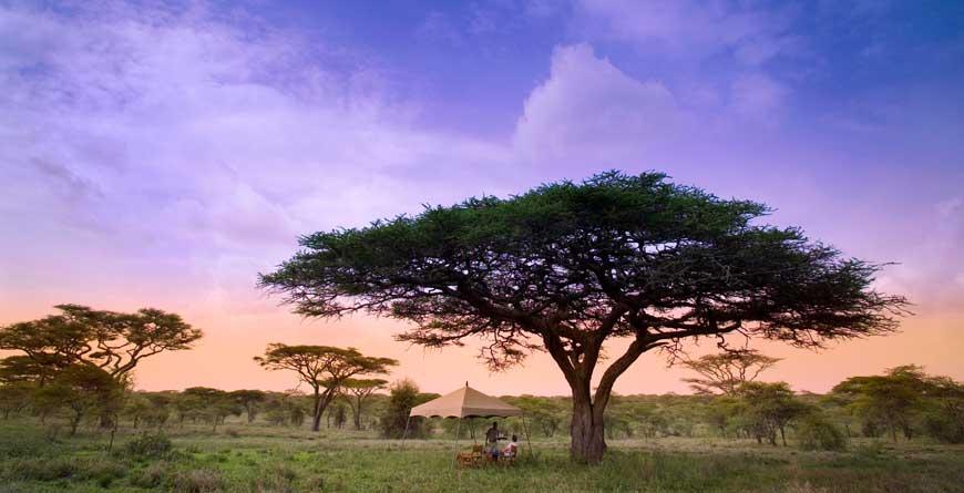 &Beyond Serengeti Grumeti Lodge Game Drive