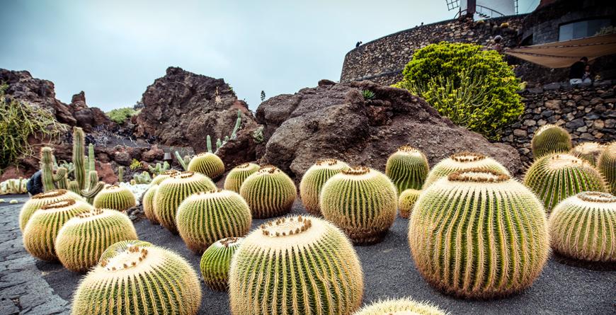 Lanzarote, Credit Shutterstock