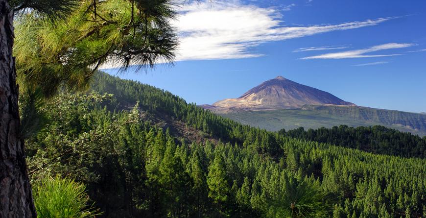 Tenerife, Credit Shutterstock