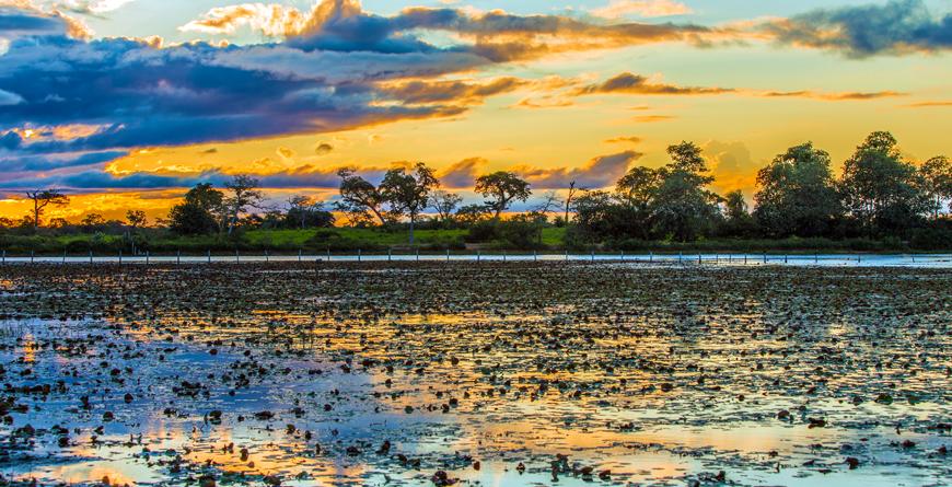 Sunset Pantanal, Credit Filipe Frazao, Shutterstock.com