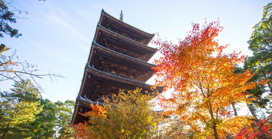 Ninnaji Temple, Credit Inside Asia