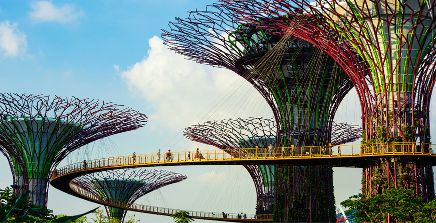 Supertrees at Garden by the Bay, Credit Singapore Tourism Board