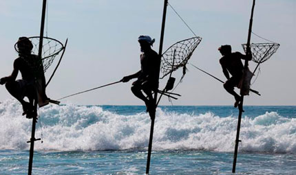 Fishermen on Stilts at Galle