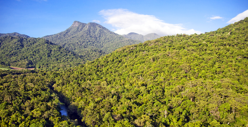 Daintree National Park, Credit Silky Oaks Lodge