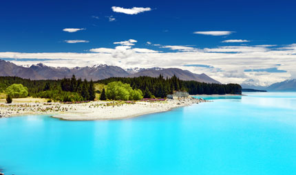 New Zealand Views, Credit Shutterstock
