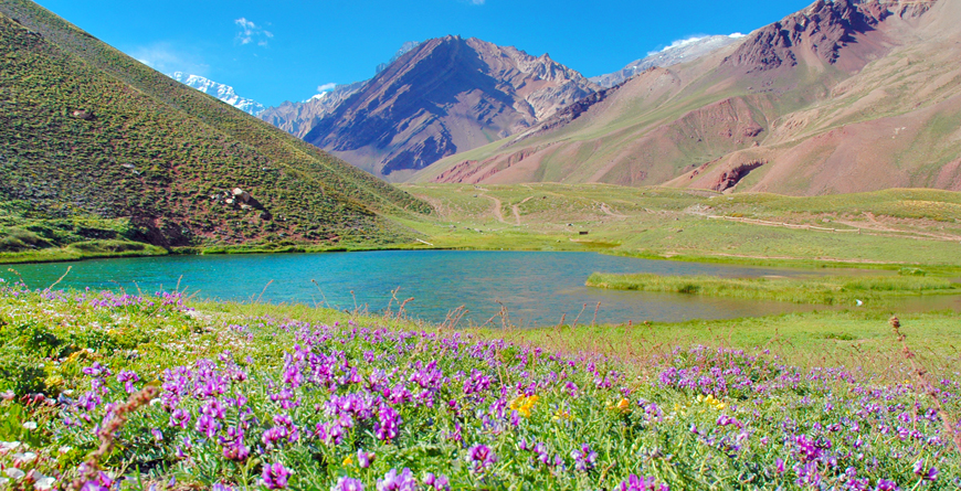 Andes Mountains, Credit Camelia Varsescu, Shutterstock.com