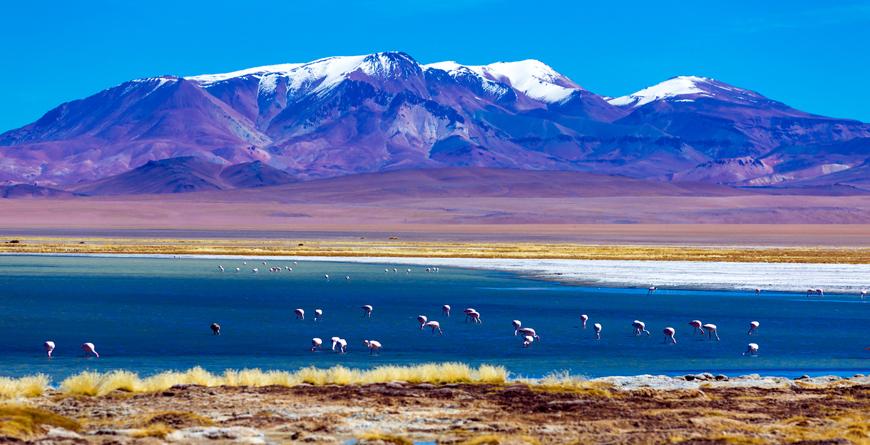 Atacama Coast, Credit Filipe Frazao, Shutterstock.com