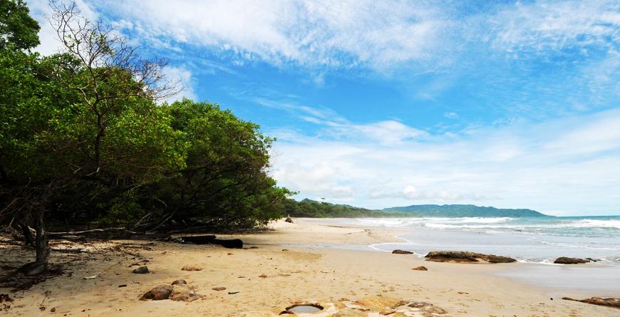 Tropical Beach, Credit Jenin VA, Shutterstock.com