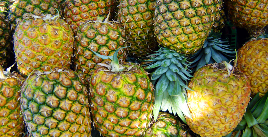 Pineapples, Credit Travel Excellence