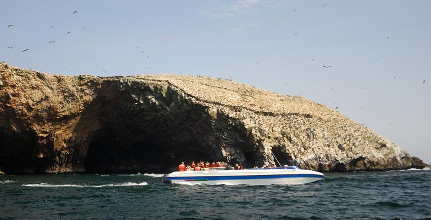 Paracas Boat Trip, Credit Viajes Pacificos