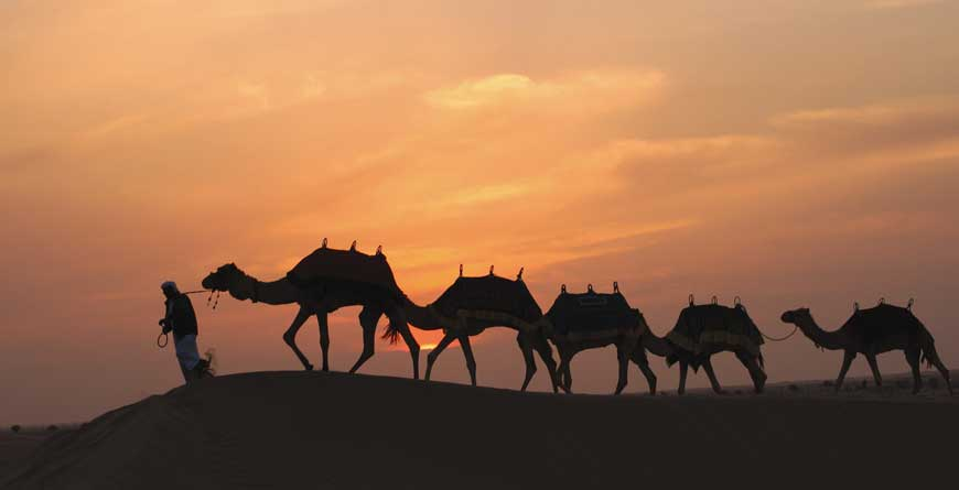 Bab Al Shams Desert Train