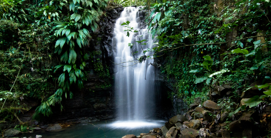 Adelphi Waterfall, Grenada