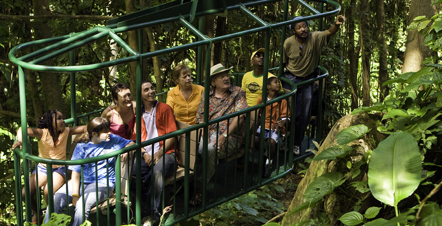 Rainforest Canopy Tam Ride, St.Lucia