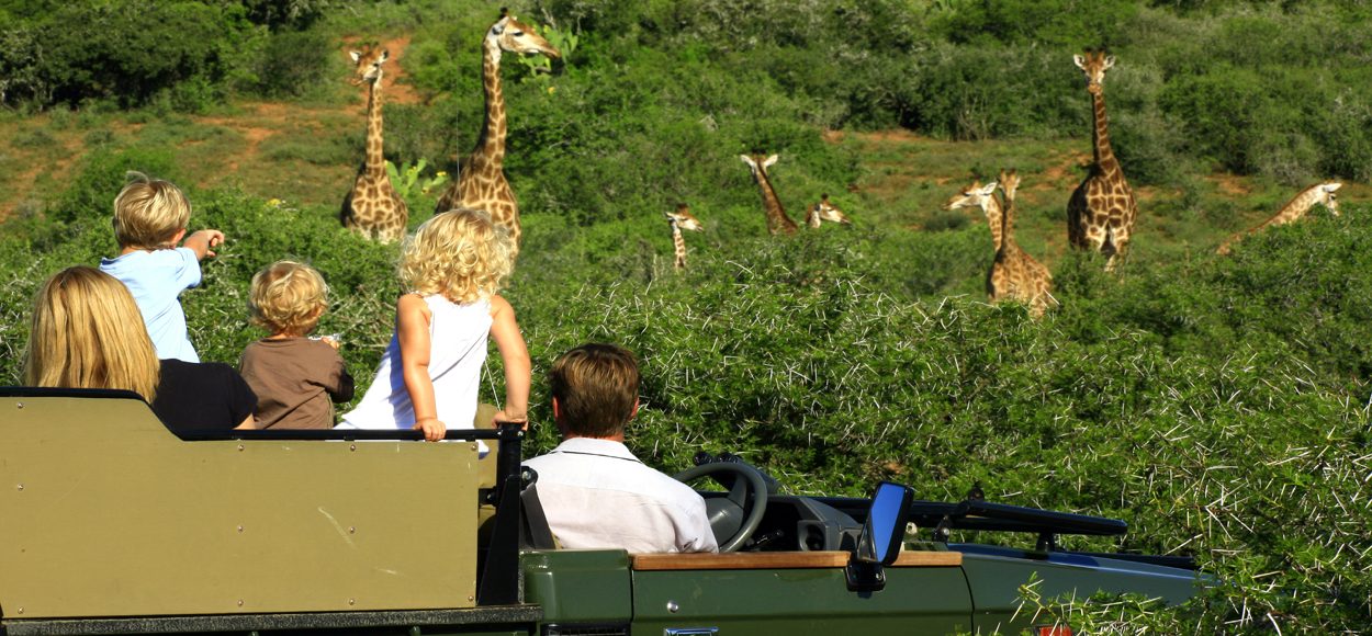 River Bend Game Drive
