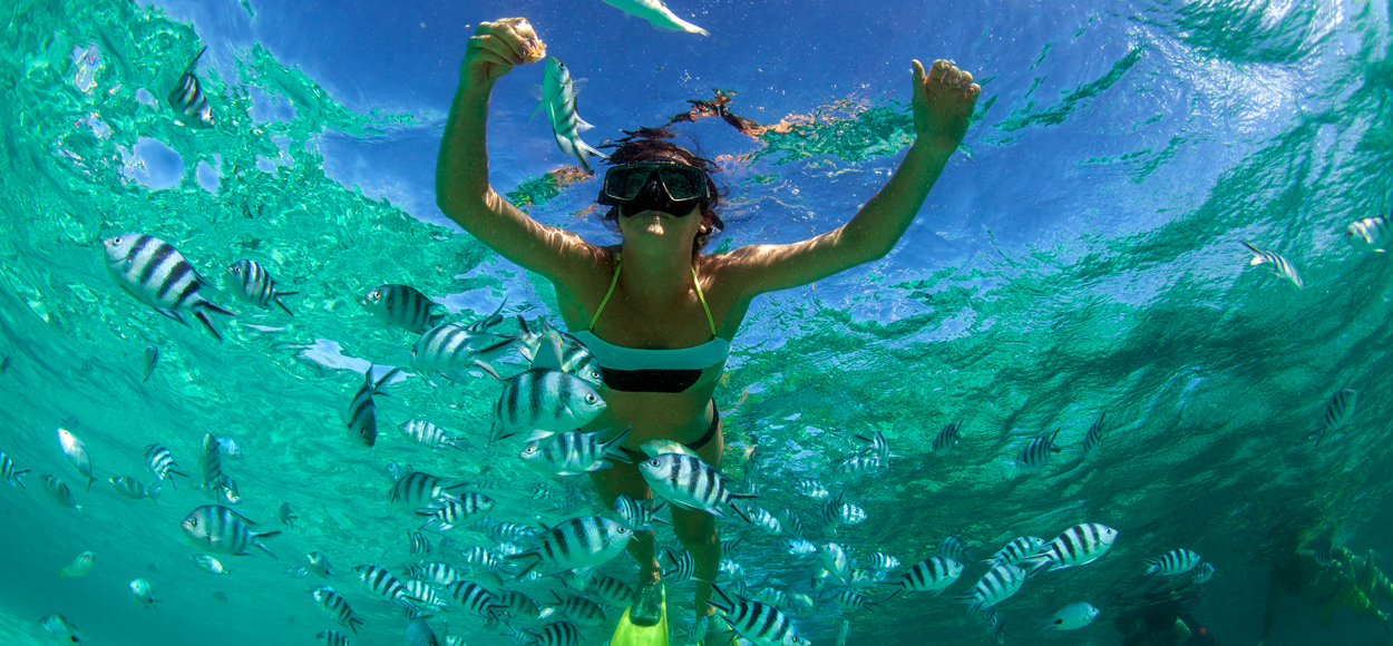 Snorkelling Credit Shutterstock