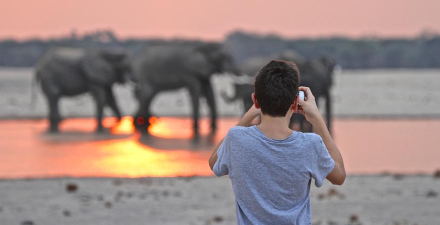 Elephants at Sunset C_Imvelo