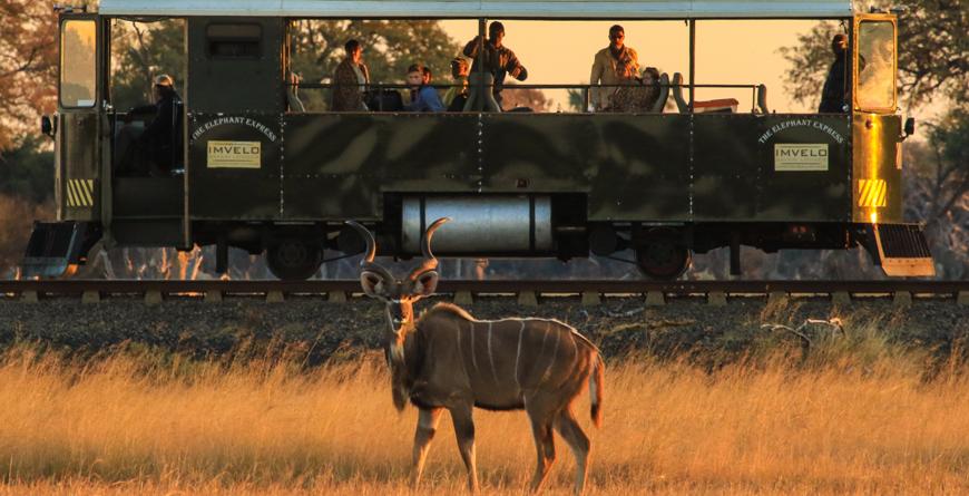 The Elephant Express C_Imvelo