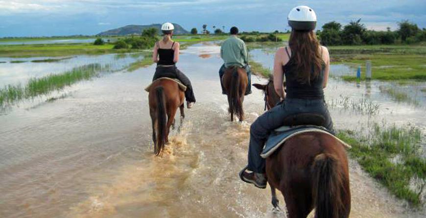 Riding through rice fields