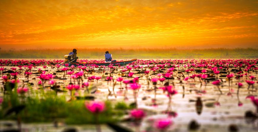 Wat Arun Sunset Bangkok, Credit Shutterstock